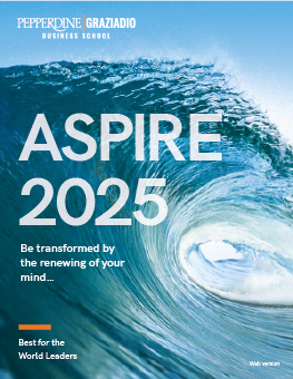 Download the ASPIRE 2025 Strategic Plan