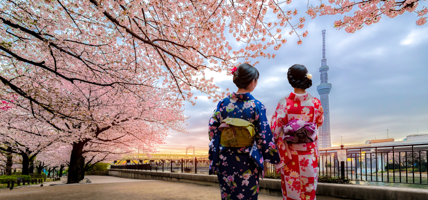 Two korean women under blossoming tree